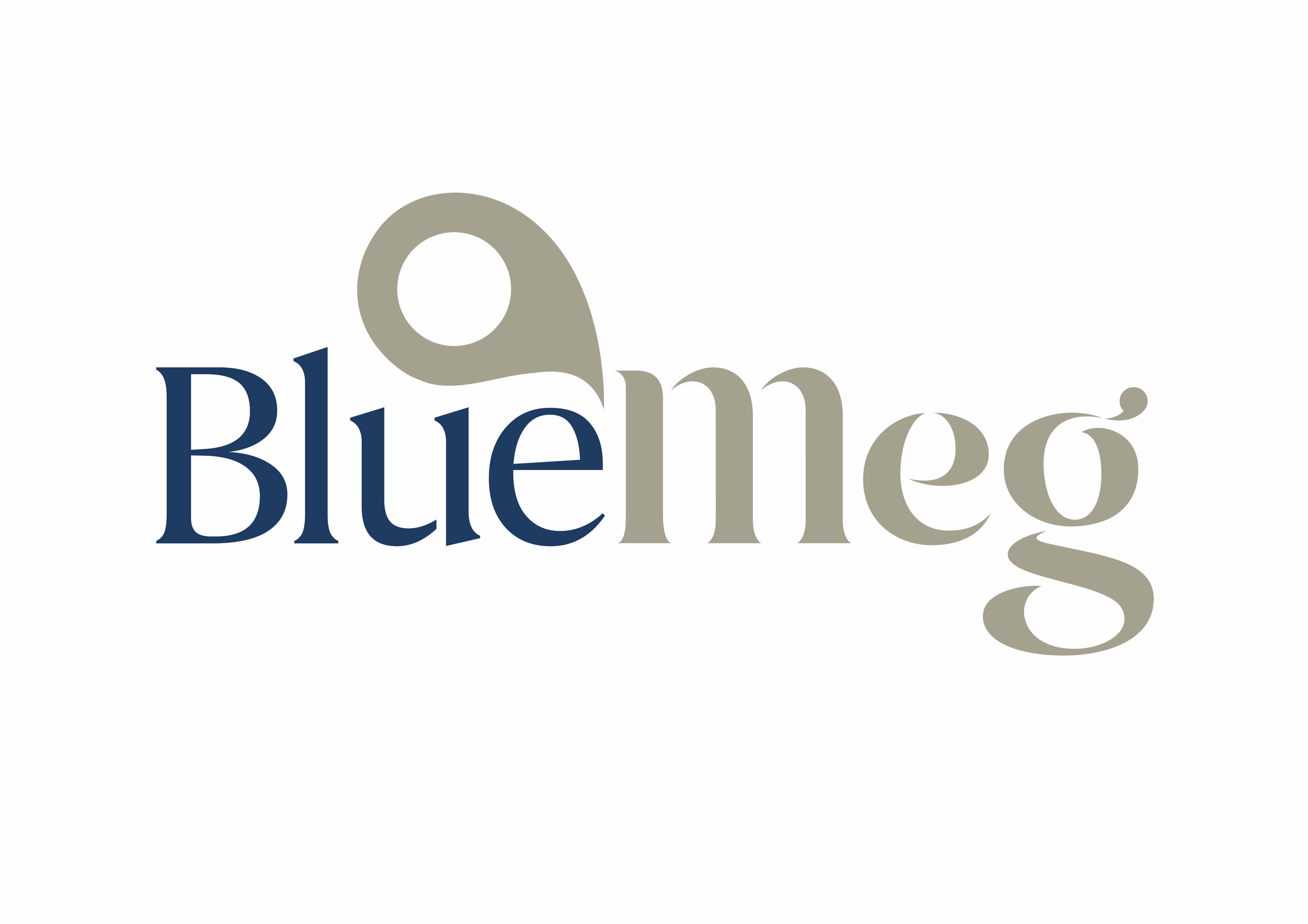 BlueMeg (Singapore) Pte Ltd