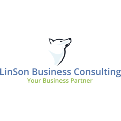 LinSon Business Consulting Limited