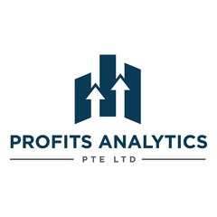 Profits Analytics - Accountant for Solopreneurs and Millennial Entrepreneurs